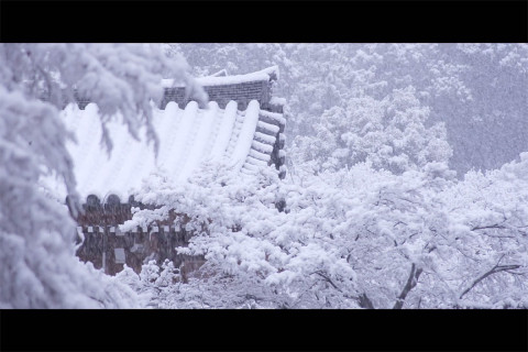 White movie of Japanese temple in a snow storm