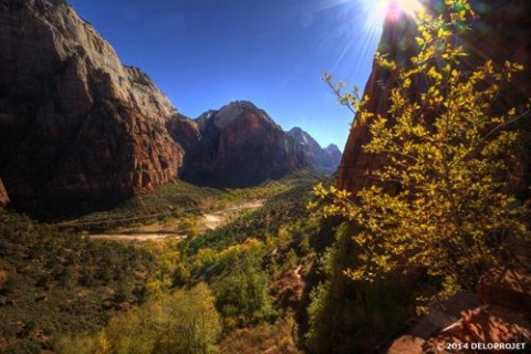 Movie of gorgeous hiking in Zion National Park