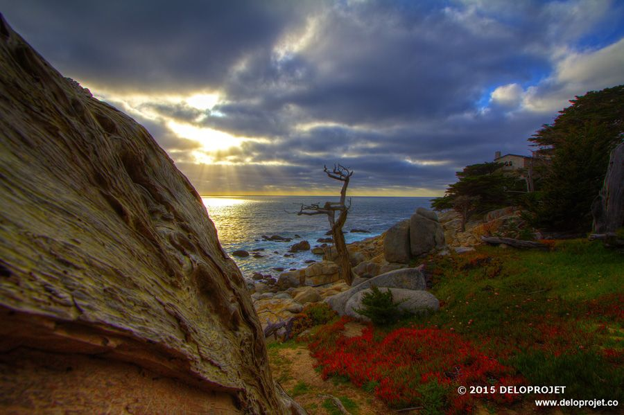 photography of the sunset carmel by the sea, california