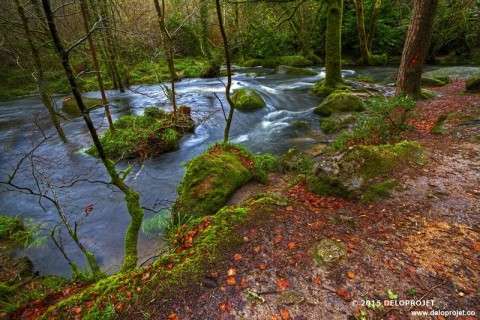 Photographs of Huelgoat, forest of fairy
