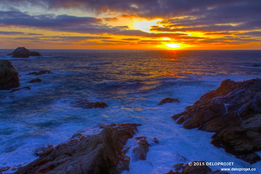 point-lobos-03
