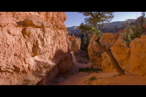 Queen's garden movie Bryce Canyon National Park