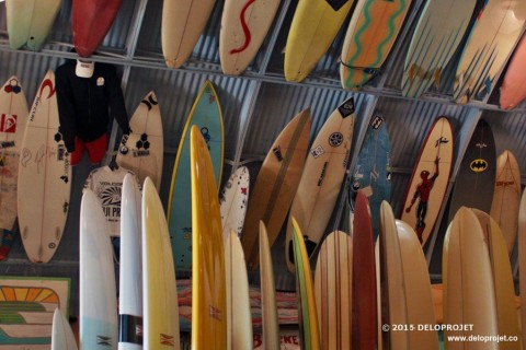 Bird's Surf Shed amazing surf shop in San Diego