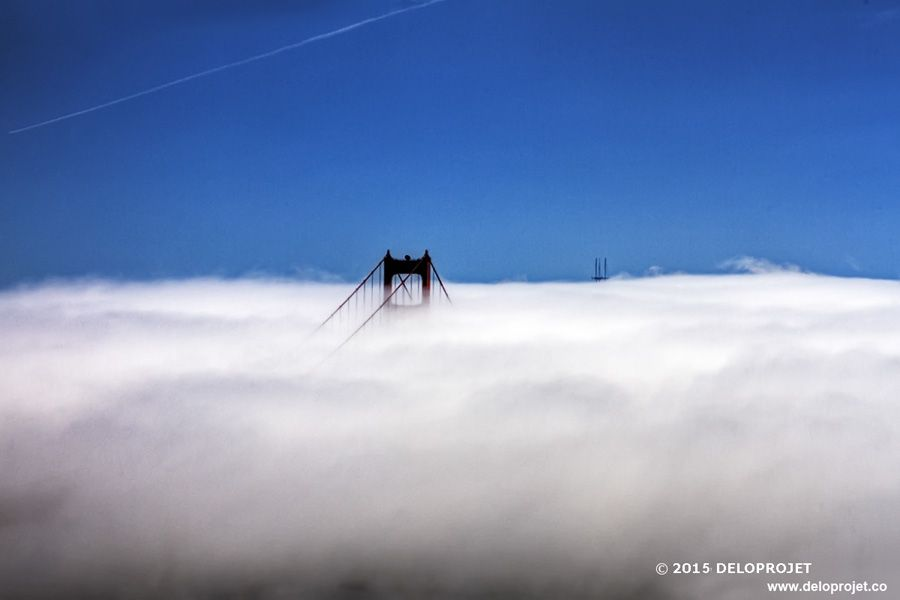 golden-gate-fog-04