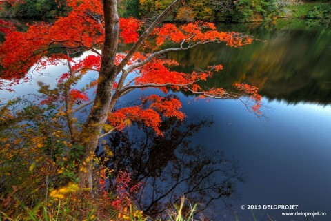 Lake Kamakita covered of amazing autumn colors