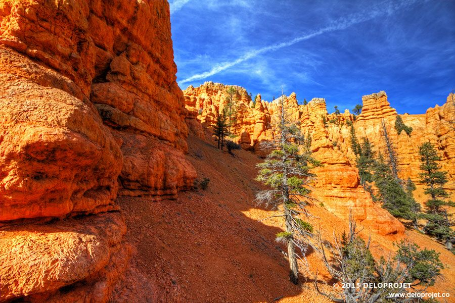 red-canyon-04