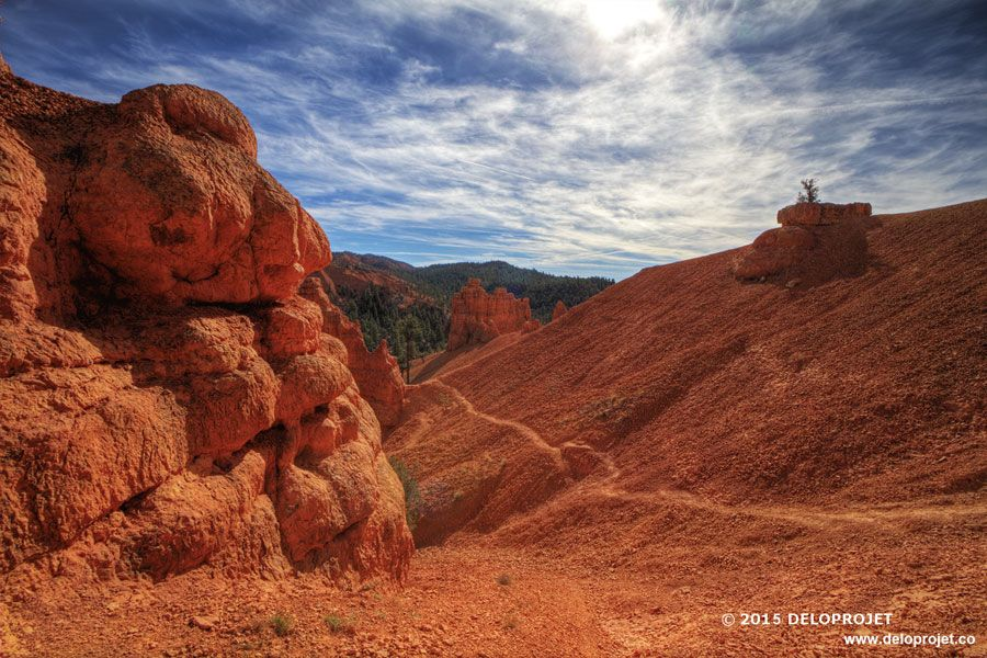 red-canyon-06