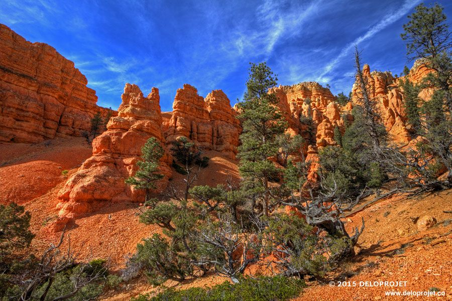 red-canyon-07