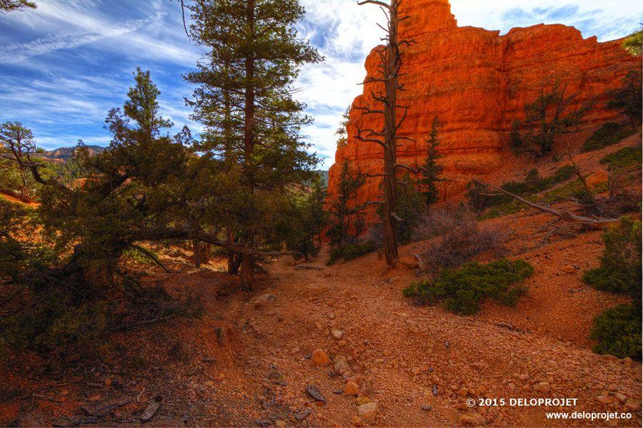 red-canyon-08