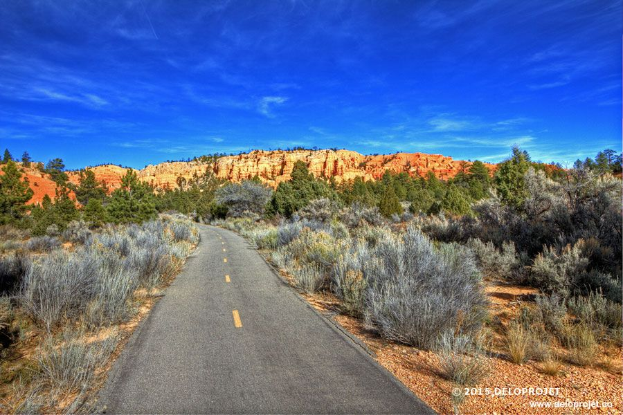 red-canyon-11