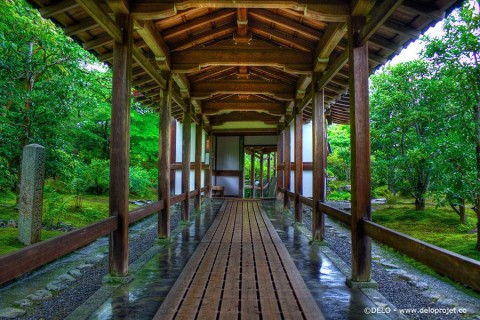 walk in the rain in the Kyoto countryside Japan