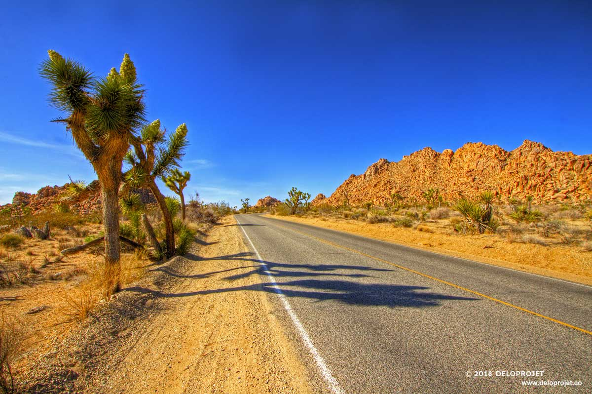 Island Design Deloprojet Take The Time To Cross The Mojave Desert Road