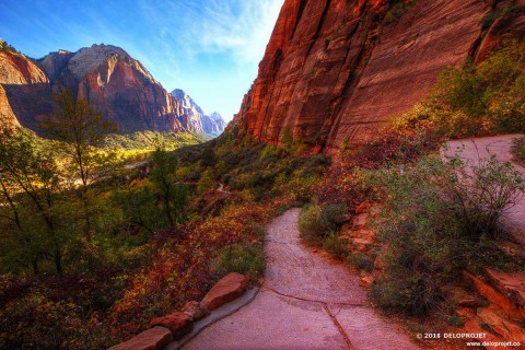 Amazing nature created in Zion National Park