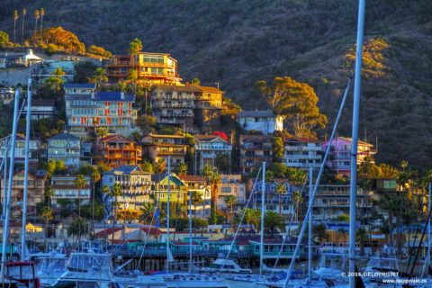 Catalina Island a paradise of Los Angeles County