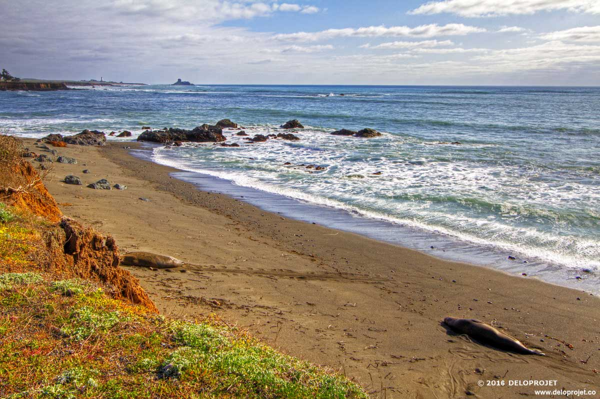 Take A Break For The Sunset At Cambria Moonstone Beach