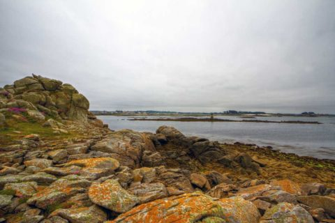 One day in June on the Ile de Batz, coast of Brittany